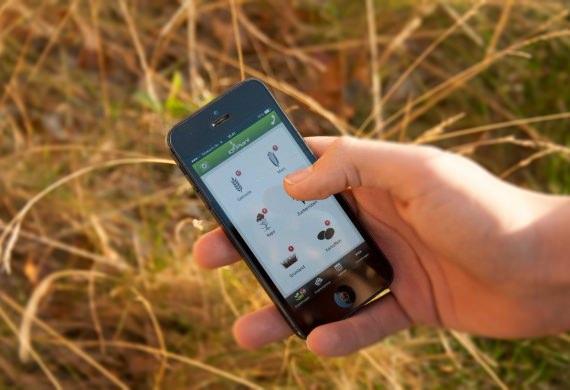 iQ-Plant_thumbnail